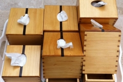2011 tissue boxes
